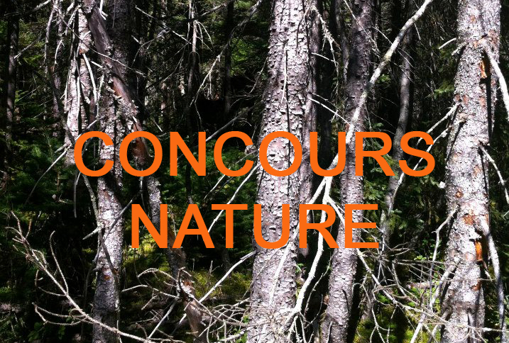 Concours Nature