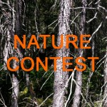 nature_contest copie