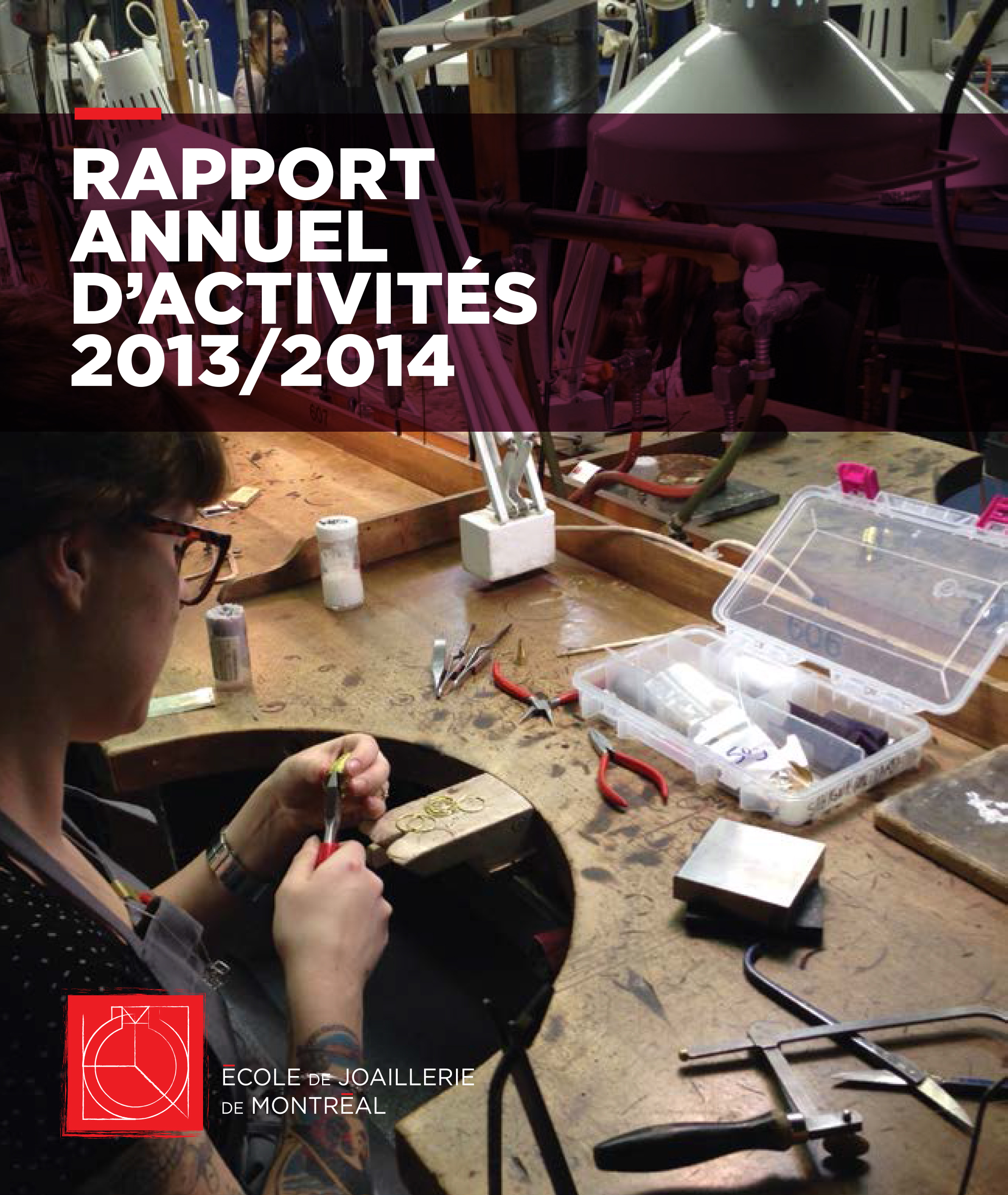 Rapport-EJoaillerie_2013-2014_web-1